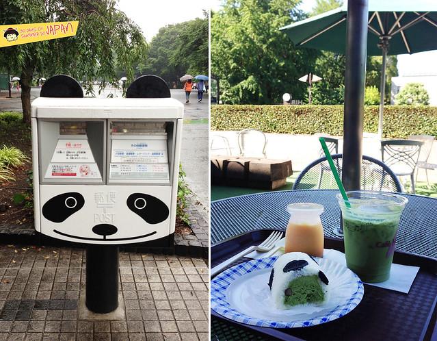 cafe hibiki - ueno park - Panda roll cake