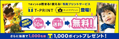 T-PRINT
