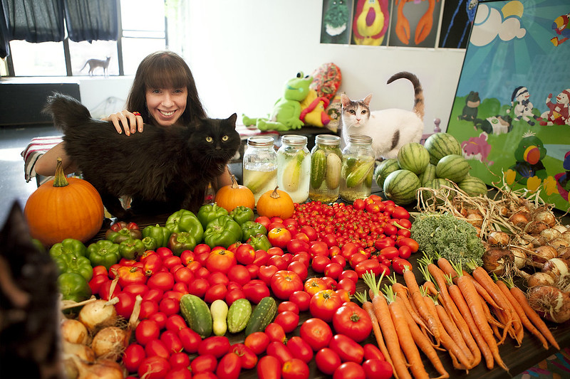 weekly harvest with cats