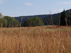 Wandeling rond het Lac des Mortes - Chapelle-des-Bois