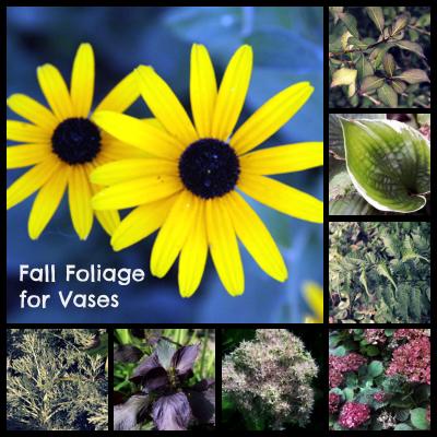 fall foliage for vase