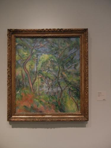DSCN7945 _ Sous-Bois, c. 1894, Paul Cézanne (1839-1906), LACMA