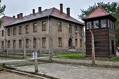 Cracow City Tours