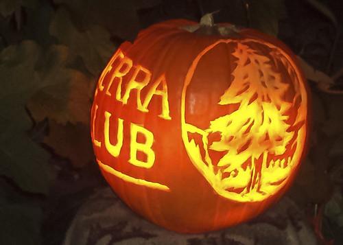Sierra Club Jack O'Lantern