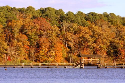 statepark autumn fallleaves lake fall tn tennessee inspirational lakeplacid chestercounty chickasawstatepark bmok bmok2