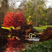 Autumn Colour - Scotney by oomumsie