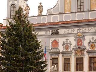 Árbol de Navidad frente al ayuntamiento de Ceské Budejovice