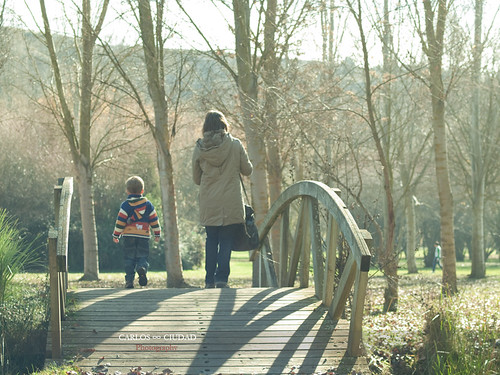 Mother and son crossing wooden bridge in a park