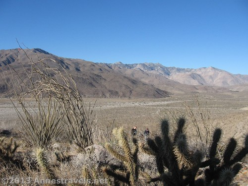 I'm not sure where the trail went, but here we are at Bill Kenyon Pass in Anza-Borrego Desert State Park, California