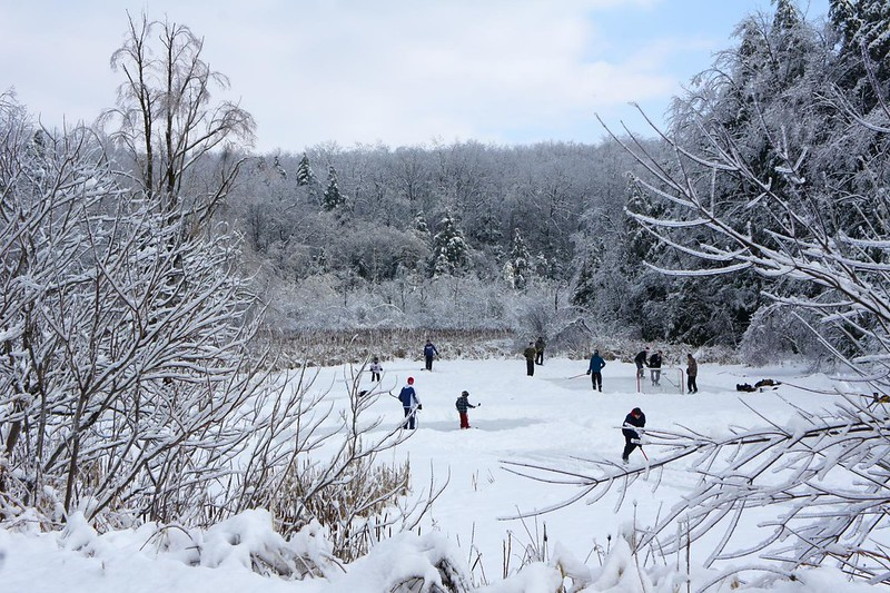 Pond Hockey - December 2013