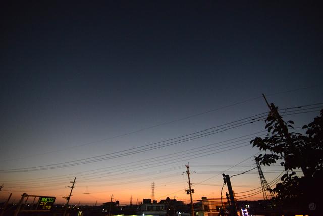 photo461