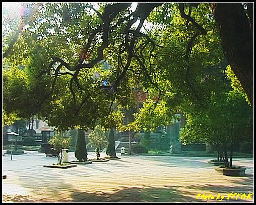 杭州 西湖 (西湖十景之一) 淨慈寺 - 016