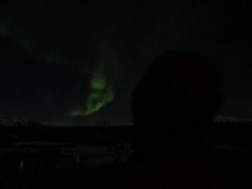 lena and the aurora 1