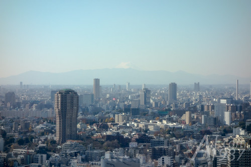 Mount Fuji view from Tokyo Tower
