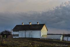 Farms, Barns, Homesteads