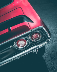 Tail of the Cuda