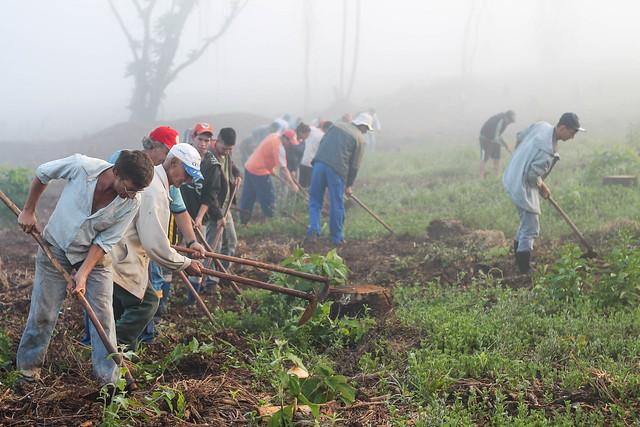 A cada um ano e meio, um trabalhador sem-terra é assassinado no Paraná - Créditos: Wellington Lenon