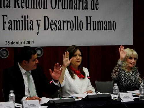 Comisión de la Familia y Desarrollo Humano 25/abr/17
