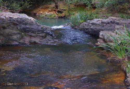wildcattle creek2