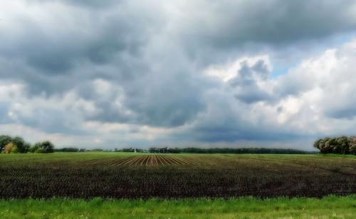 Farm Horizon - Project Flickr wk 25