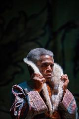 André de Shields (Akela) in Tony Award winner Mary Zimmerman's new musical adaption of THE JUNGLE BOOK, photo: Liz Lauren