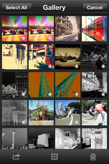 Camera Roll-4673