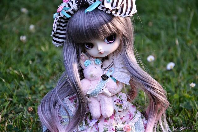 Wonderland ♣