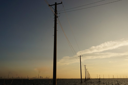 utility poles into the sea 02