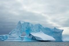 Antarctica 246 - Pleneau Island Iceberg Alley