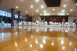 Shorinji Kempo World Taikai 2013 (French Federation)