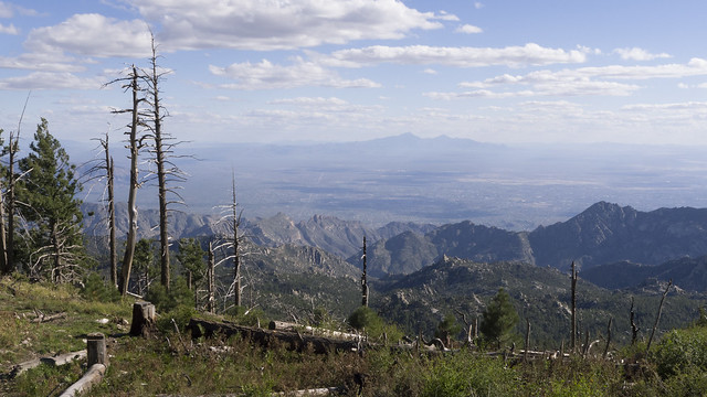 Tucscon from the top of Mount Lemmon (2791 m), Coronado National Forest