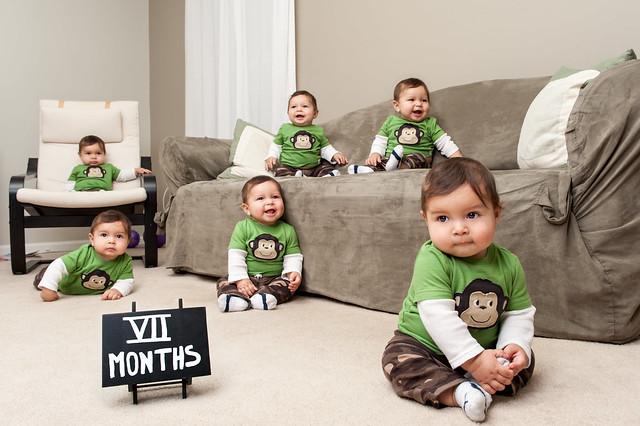 VII Months