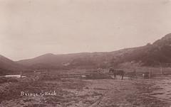 Bridge, Ettrick (c.1915)