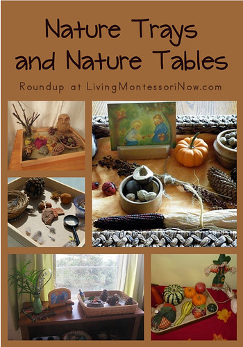 nature trays