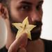 star fruit. by kopfleuchten