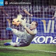 goalkeeper, football player, ball, player, football, goal, ball, athlete,