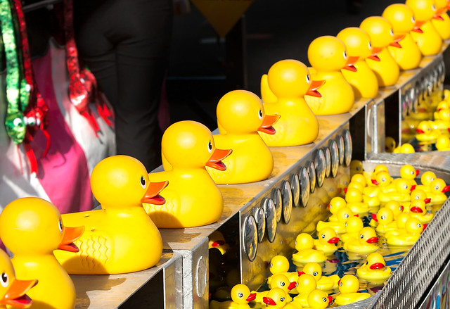 Get your ducks in a row.jpg