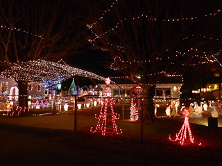 Lindsey Family Lights-001