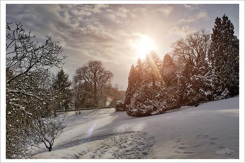 December Solstice / Winter-Sonnenwende