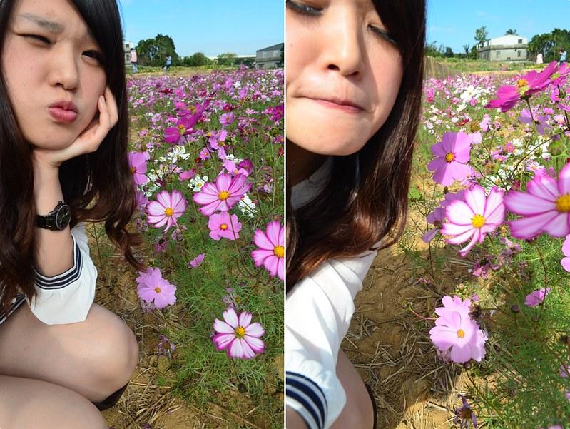 花 (31)