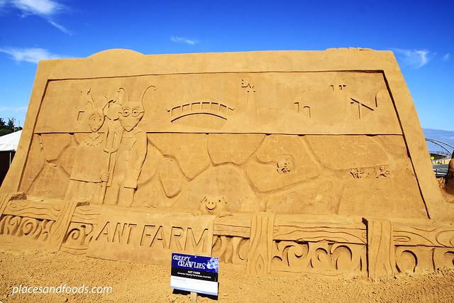 frankston sand sculpting ant farm