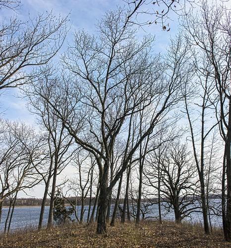 Red Cedar Lake State Natural Area