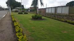 Ciudadela González de Chone se capacita en cuidado de áreas verdes