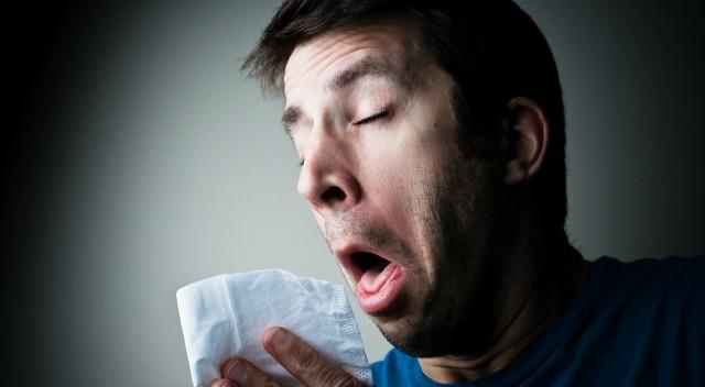 estornudo-diarioecologia