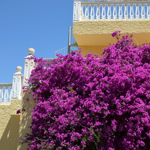 Mediterranean Sight by Ginas Pics