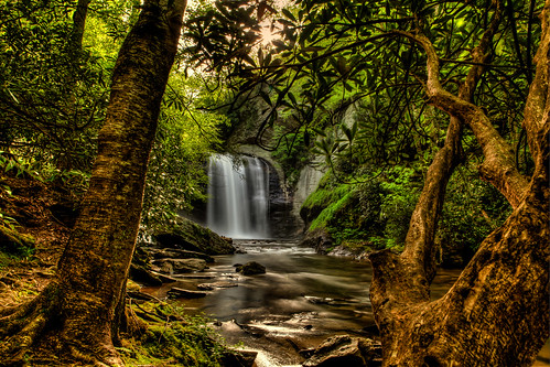 Pisgah National Forest..........