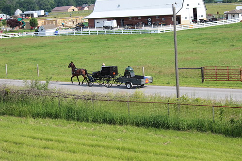 IMG_0163_Amish_Buggy_Pulling_Wagon_to_Worksite