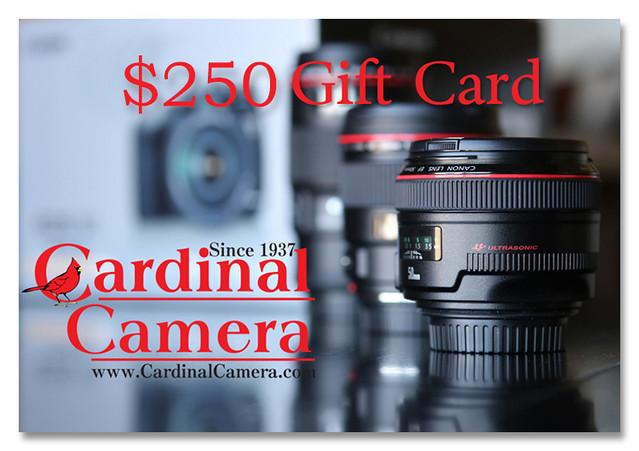 Cardinal Camera 250