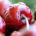 Essere un'insetto non deve avere tutti gli svantaggi.. se queste sono le possibili visuali. by Maria Dattola