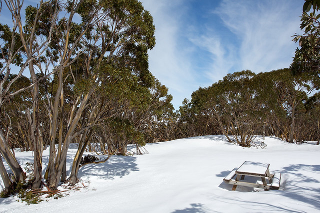 Picnic table at Mount Baw Baw